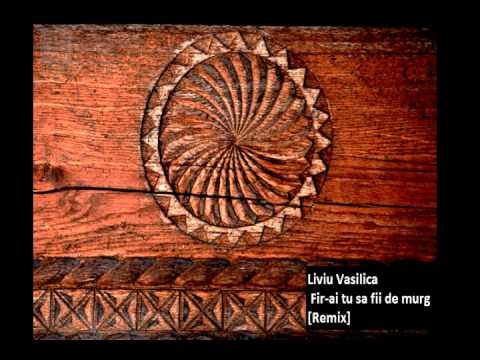 Liviu Vasilica Fir-ai tu sa fii de murg  Karaoke/Instrumental