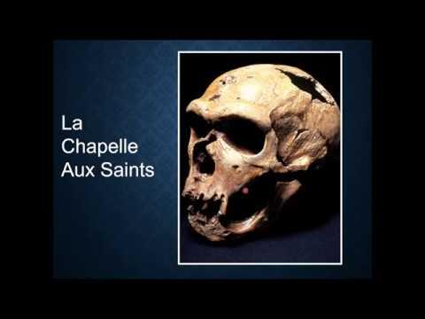 Lec 20 Neanderthals (pt. 2)