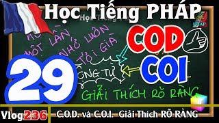 Học Tiếng Pháp # 29 : COD và COI - Cách học Đơn Giản, Hiệu Quả và Thú Vị - 236