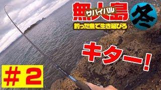 「真冬の無人島」2泊3日釣った魚で0円サバイバル生活#2