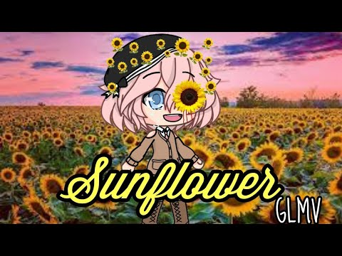 Sunflower || Sierra Burgess || Gacha Life Music Video || Jess