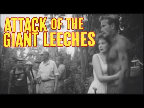 LNC and the Attack of the Giant Leeches