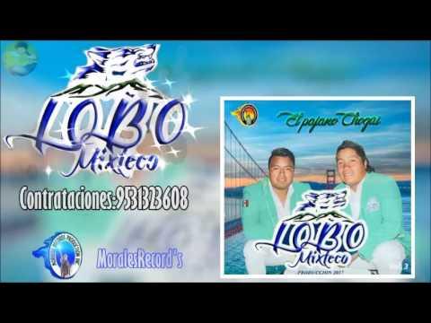 ALBUM COMPLETO PRODUCCION 2017 LOBO MIXTECO