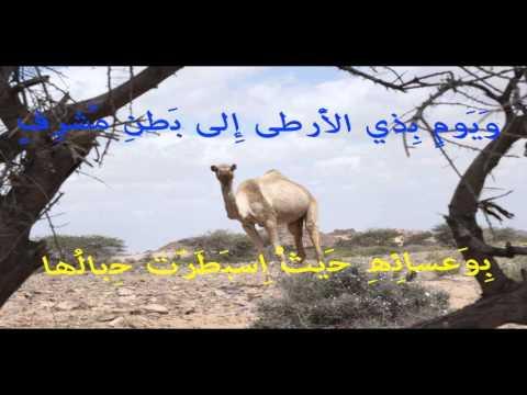 saharawi music and life in western sahara and mauritania, sidati abba