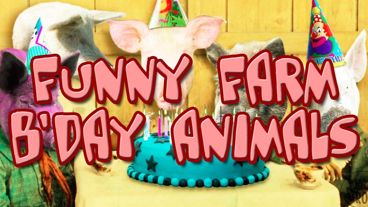 Happy Birthday Animals Funny Farm Youtube