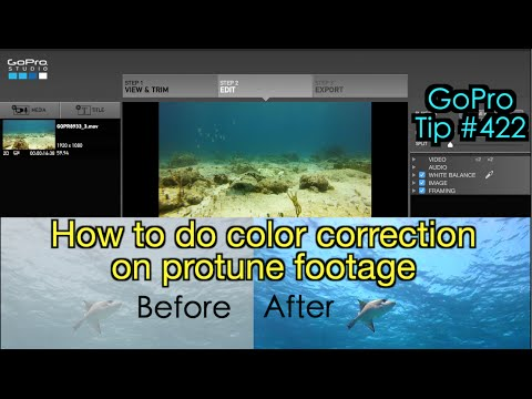 How To Do Color Correction On Protune Footage On GoPro Studio - GoPro Tip #422