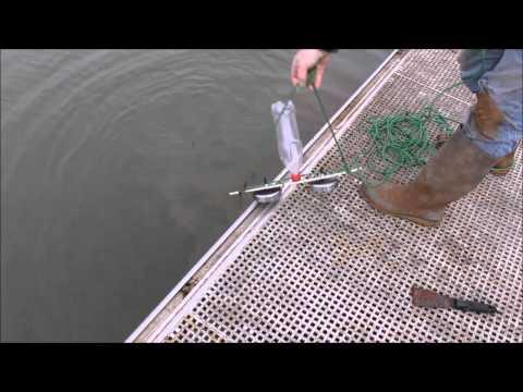 магнит для приманки рыбы