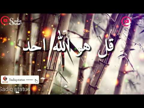 Qulhuwallah Ahad WhatsApp Beautiful Status
