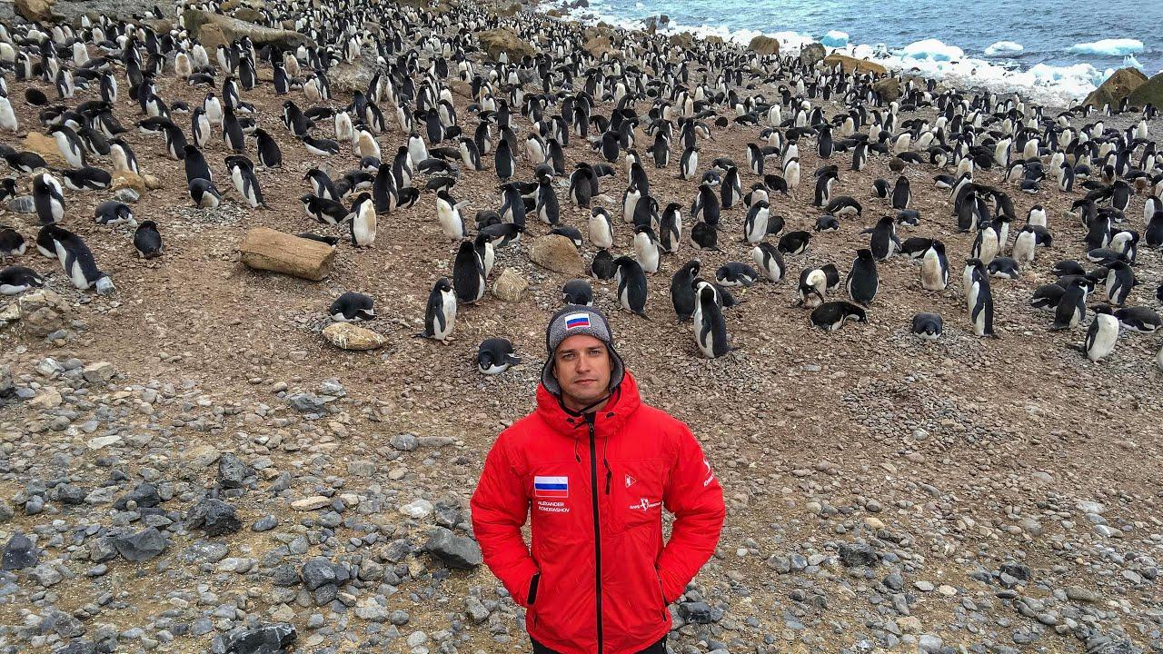 Колонии Пингвинов. Загораем и Купаемся в Антарктиде. Попали в Шторм. Пролив Дрейка