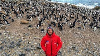 Что Русские Делают в Антарктиде