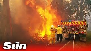 Australia bushfires: Authorities warn they 'can't get upper hand' on more than 100 blazes