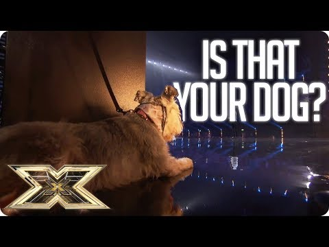 MAN BRINGS HIS DOG TO THE X FACTOR! | The X Factor UK Unforgettable Audition