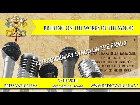 Press briefing on the works of the synod 2014.10.09