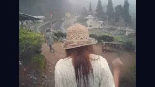 Puncak Bogor の茶園