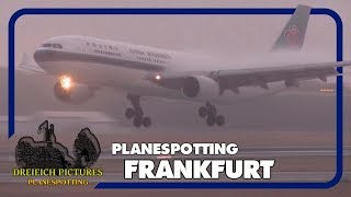 Planespotting Frankfurt Airport | August 2019 | Teil 1