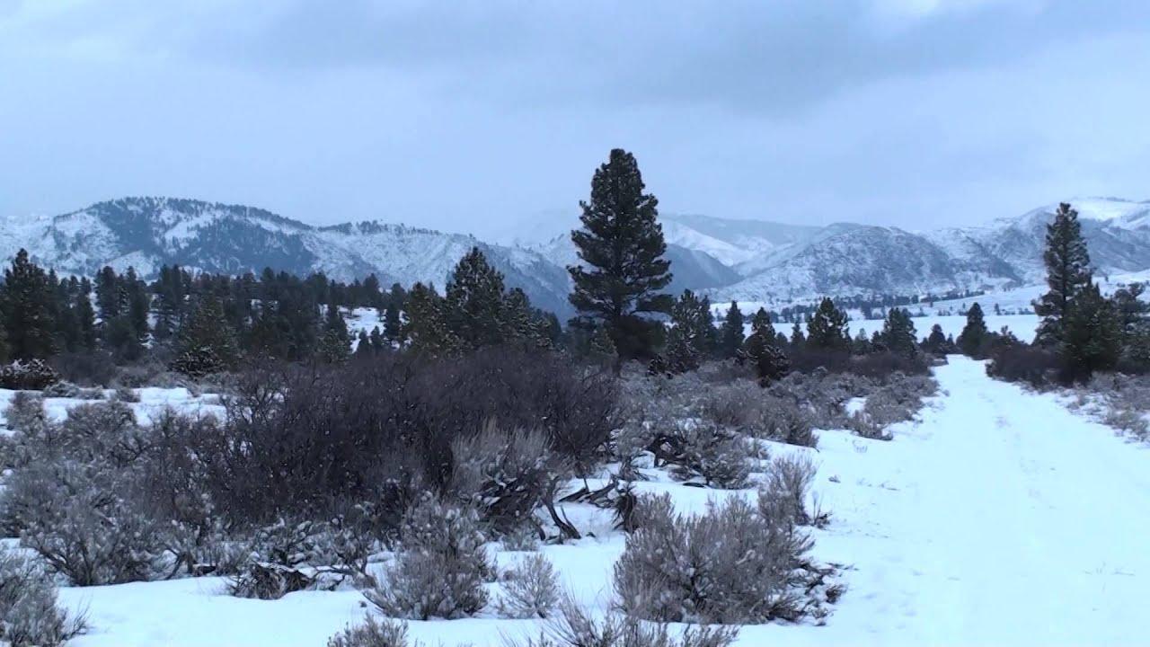 montana winter landscape 003 stock
