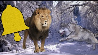 The Chronicles of Narnia - Clang Reviews