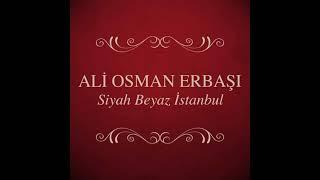 Ali Osman Erbaşı - Hangimiz Sevmedik (Enstrümantal)