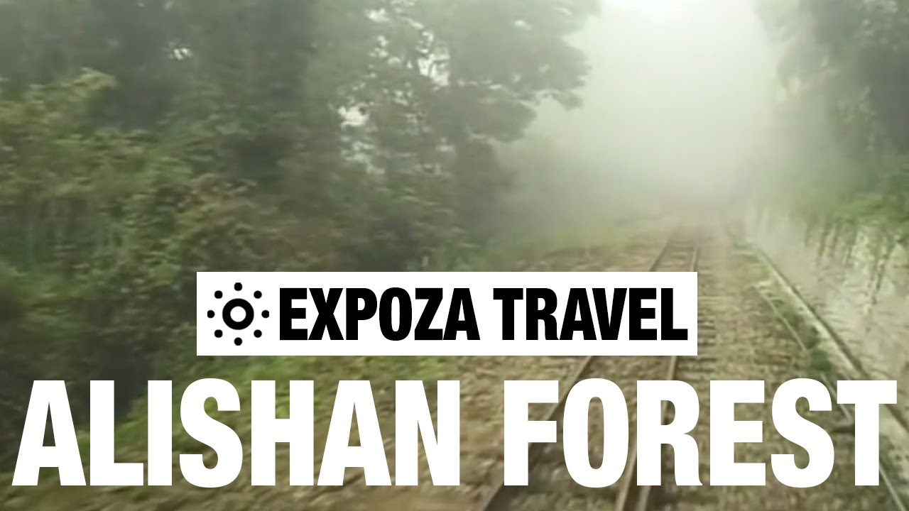 The Alishan Forest Railway Vacation Travel Video Guide