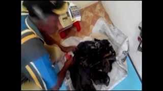 Pekerja Temukan Kerangka Korban Tsunami di Krueng Aceh