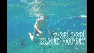 菲律賓宿霧旅遊 Moalboal墨寶沙丁魚風暴