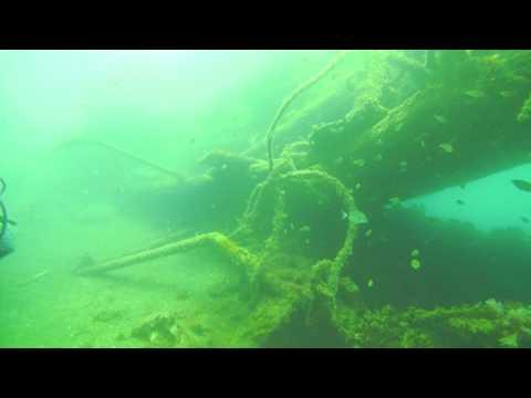 Diving Lanzarote - 38