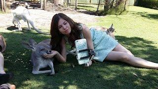 Kangaroo Selfie! ПРИКОЛЬНЫЕ КАДРЫ или СЕЛФИ с КЕНГУРУ Australia