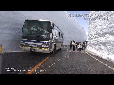 [富山]春の立山黒部アルペンルート、雪の大谷と冬羽の雷鳥[UHD4K顔声曲無] - Snow Wall (Yuki-no-Otani),Winter feather grouse