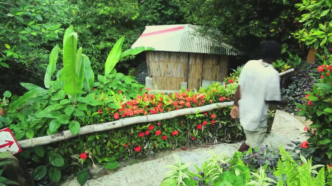 Tia S Sulphur Spa Dominica