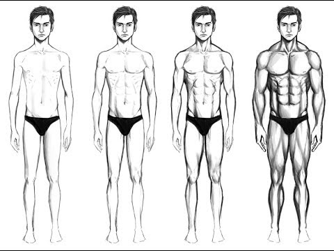 Drawing Tutorials How To Draw A Man Body Youtube