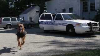 Ellsworth Police K9 Unit
