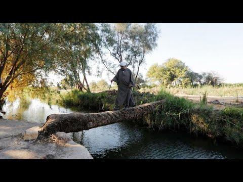فيديو: مزارعون مصريون يخشون تفاقم أزمة المياه بسبب سد النهضة …  - 20:53-2019 / 11 / 6