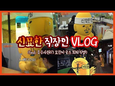 신묘한 직장인 VLOG (feat. 우수사원(?) 묘한이 굿즈 회의 직캠)