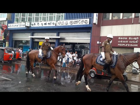 Sri Lanka Police Colombo Galle Face to Maradana Road go On the Horse Beautiful and awesome at Fettah