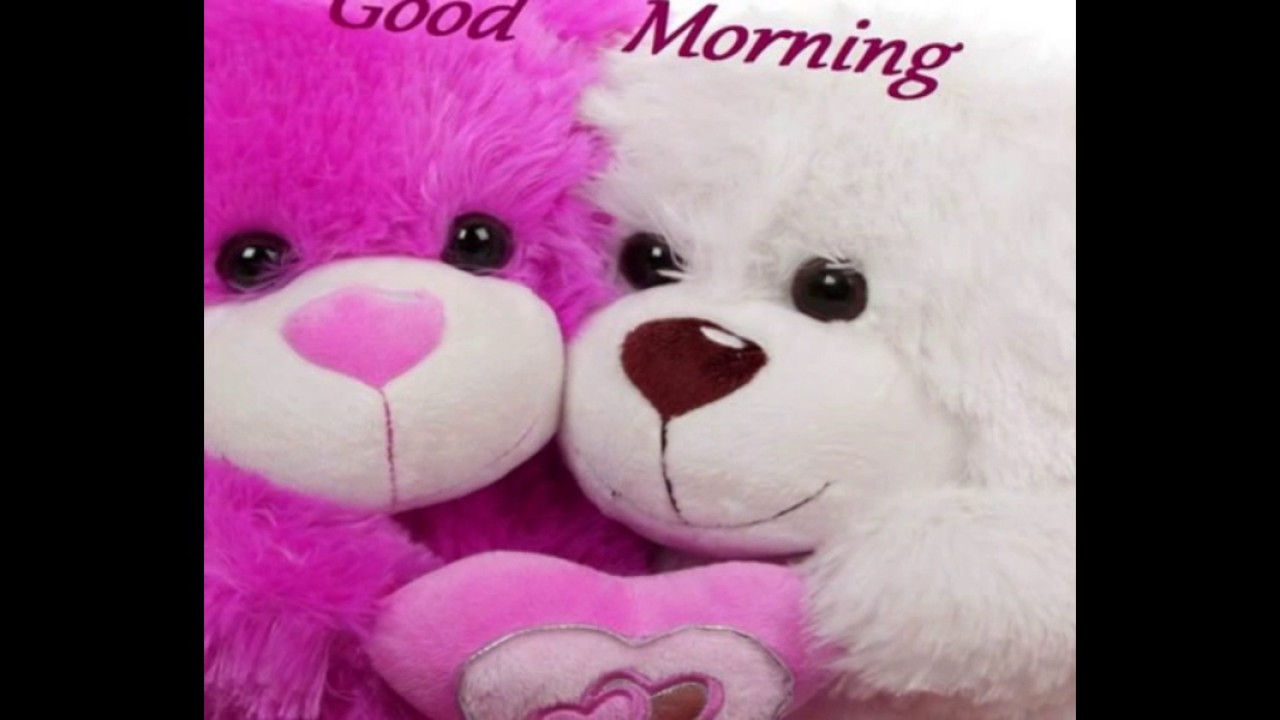 Good Morning Wishes With Gif Teddy Bear QuotesGreetingsEcardSayingPictureImage WhatsApp Video6