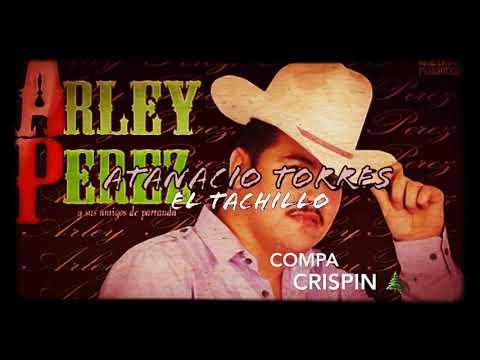 Atanacio Torres (El Tachillo) - Arley Perez