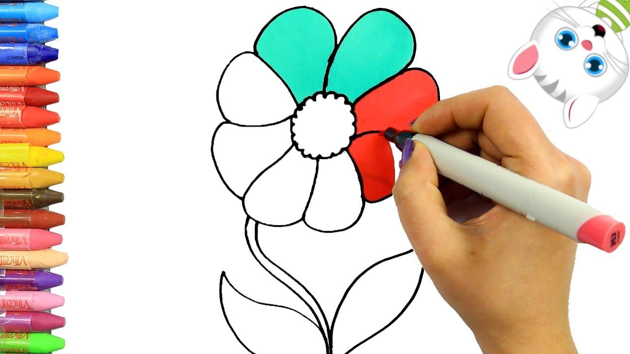 Renkli Papatya Nasıl çizilir Nasıl Boyanır Mimi Ile çocuklar Için