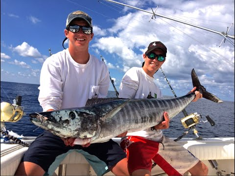 Offshore Fishing for Wahoo and Bigeye