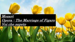 """モーツァルト 歌劇 """"フィガロの結婚 - 恋とはどんなものかしら"""" K.492 W..."""