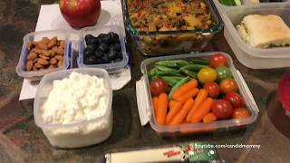 School & Work Lunches || A Variety Of Ideas!