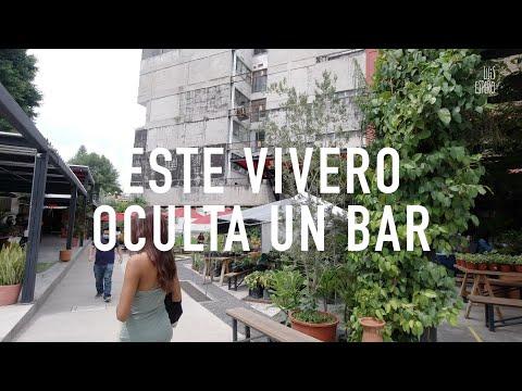 Este VIVERO OCULTA un BAR 🤡 | Jardín Juárezиз YouTube · Длительность: 8 мин11 с