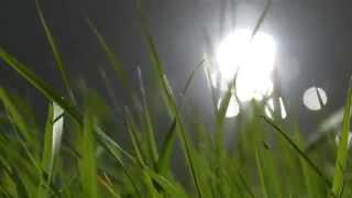 testing Lumix FZ1000: Shooting at the Sun