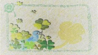 四つ葉のクローバー.wmv 四つ葉のクローバー 検索動画 11