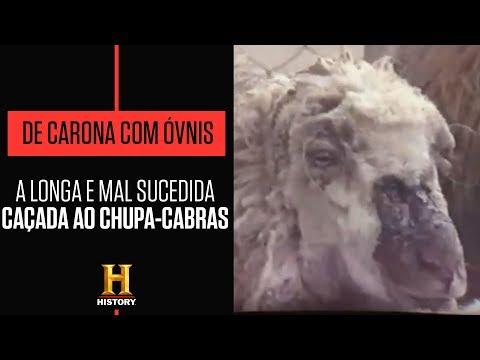Chupa-cabras só ataca fêmeas e corpos nunca entram em decomposição | DE CARONA COM ÓVNIS | HISTORY