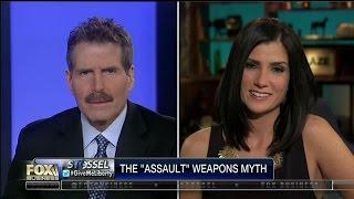 Gun Control Myths Exposed - Dana Loesch