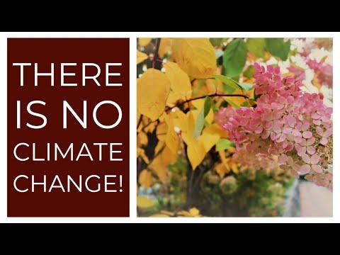 Global Warming, Climate Change, Greta Thumberg? Swaruu (Taygeta-Pleiades) Responds