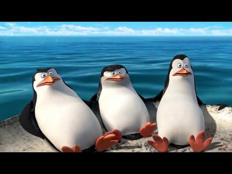 Журнал шкипера. Последняя запись   Пингвины Мадагаскара (2014)