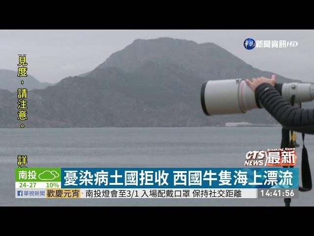 憂染病土國拒收 西國牛隻海上漂流|華視新聞 20210228
