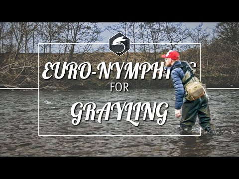 EURONYMPHING | SCOTLAND | RIVER CLYDE | WINTER GRAYLING