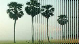 Hoa Thom Buom Luon